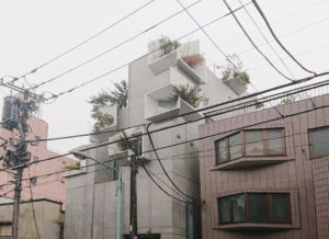 Tree-ness-House